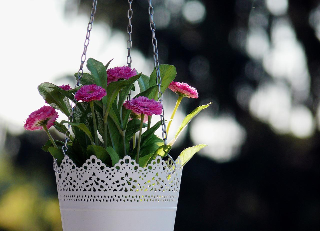 Kupiłam białe doniczki na kwiaty… i co dalej?