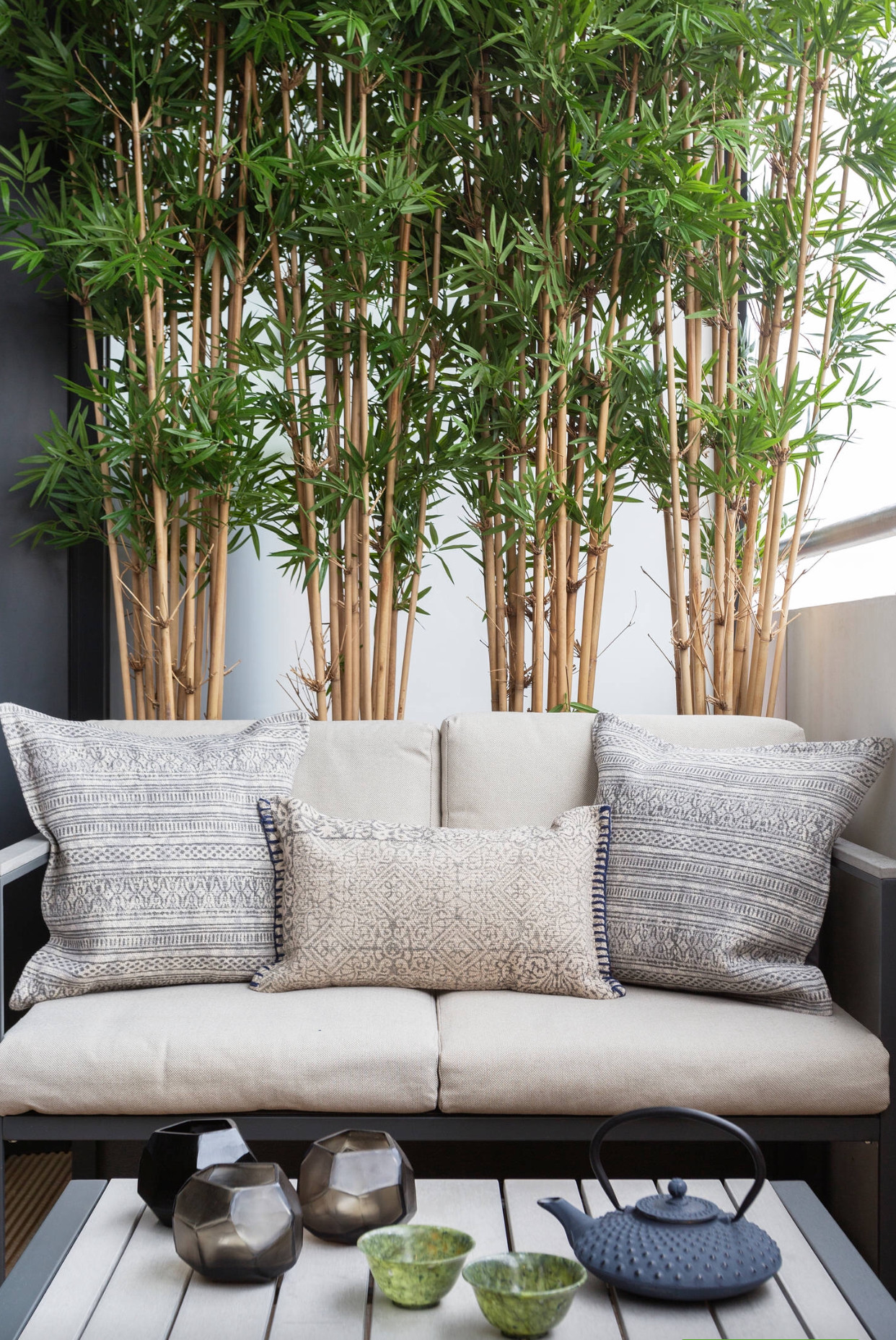 bambus na balkonie